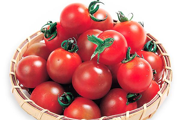 トマト・ミニトマトのイメージ
