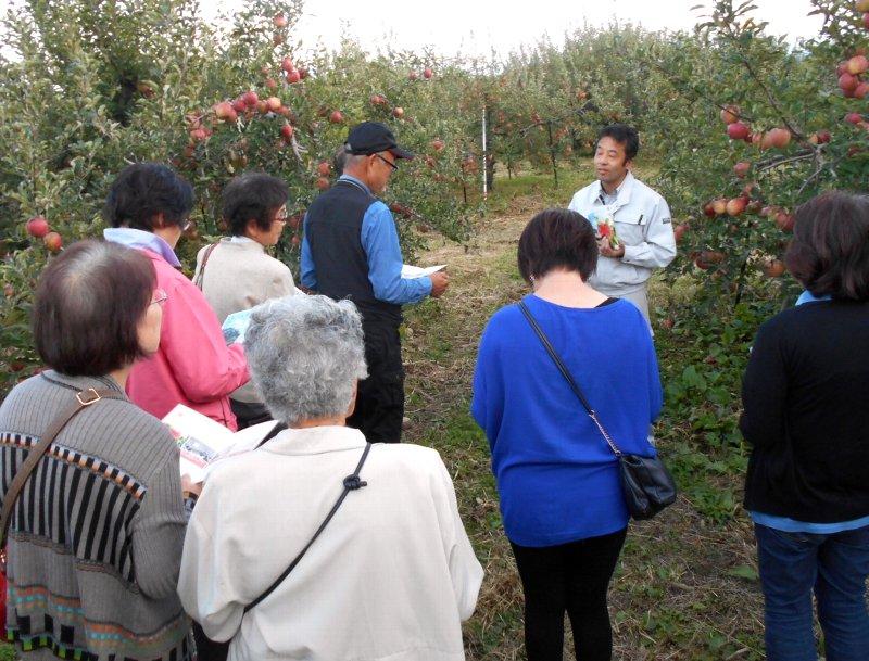 福島市のりんご果樹園訪問